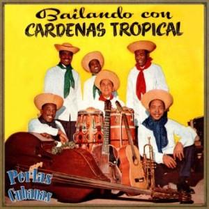 Bailando Con Cardenas Tropical