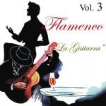 Vintage Flamenco Guitar