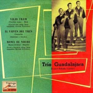 El Vaivén Del Tren, Trío Guadalajara