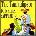 Huapango de la Caña Brava, Trío Tamaulipeco