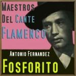 Maestros del Cante Flamenco: Fosforito
