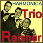 Harmónica, Trio Raisner