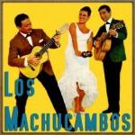 La Bamba, Los Machucambos