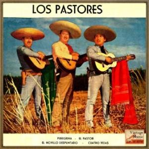 Peregrina, Trío Los Pastores