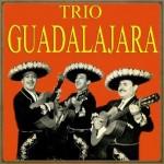 Trio Guadalajara, Trio Guadalajara