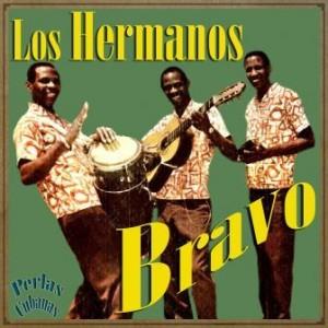 Los Hermanos Bravo, Hermanos Bravo