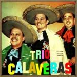 Trío Calaveras, Es México