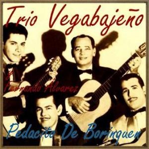 Pedacito de Borinquen, Trio Vegabajeño