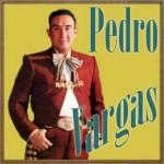 Pedro Vargas, Pedro Vargas
