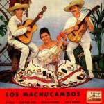 ¡Ay Pepito!, Los Machucambos