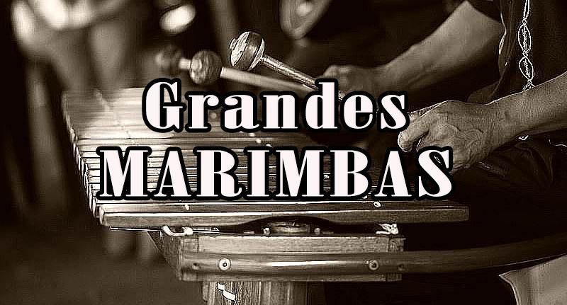 Marimbas El Bodeguero, Canciones con Marimba