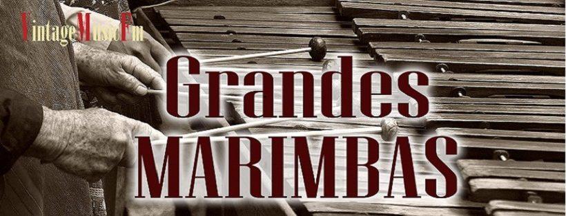 Ver vídeo: GRANDES MARIMBAS